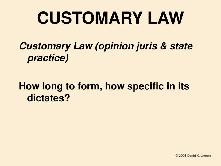 CUSTOMARY LAW
