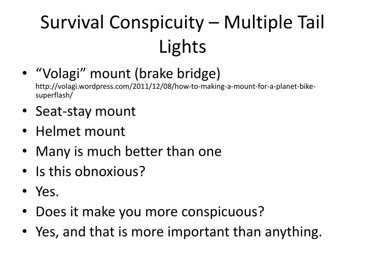 Survival Conspicuity – Multiple Tail Lights