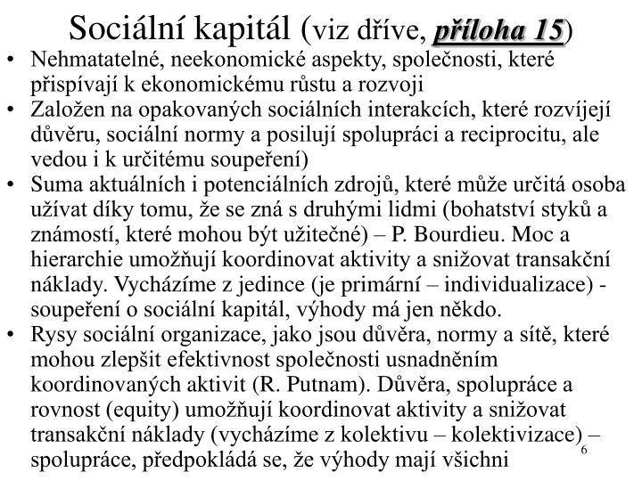 Sociální kapitál (