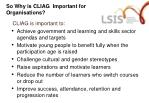 so why is cliag important for organisations