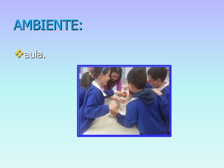 AMBIENTE: