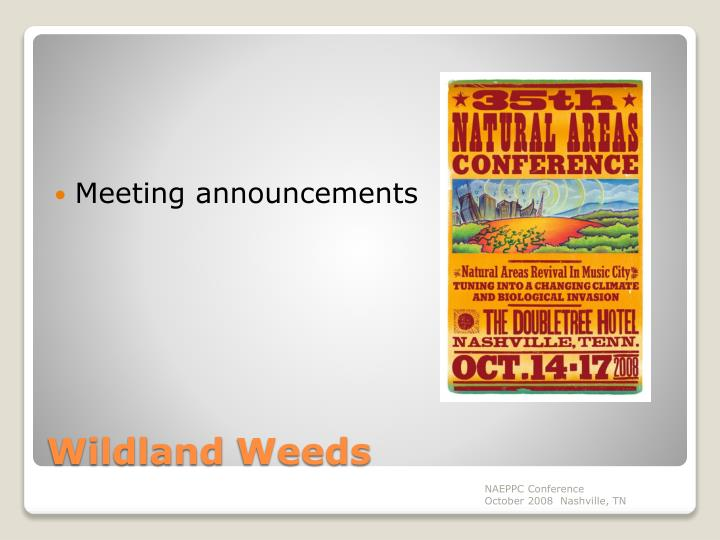 Meeting announcements