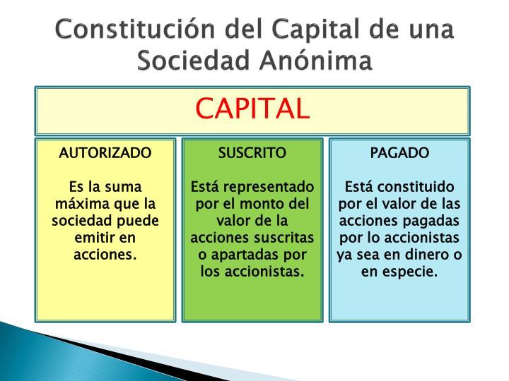 Constitución del Capital de una Sociedad Anónima
