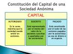 constituci n del capital de una sociedad an nima