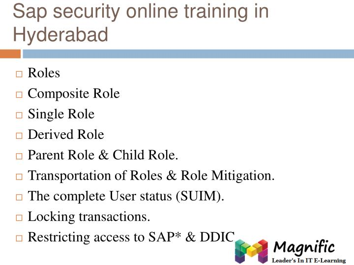 Sap security online training in Hyderabad