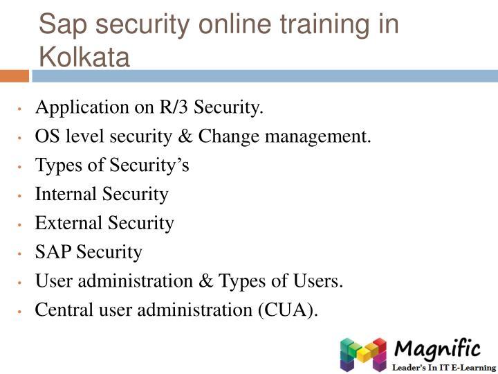 Sap security online training in Kolkata