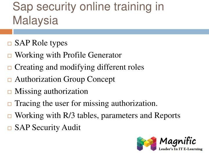Sap security online training in Malaysia