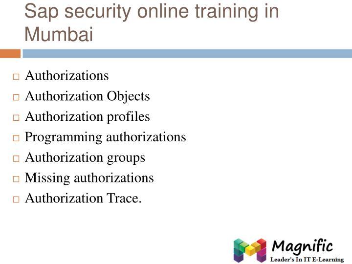 Sap security online training in Mumbai