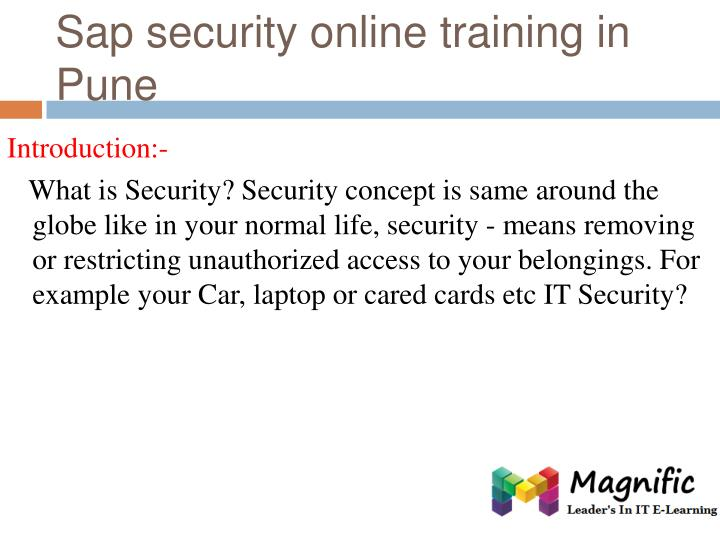 Sap security online training in pune