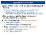 flood insurance concept