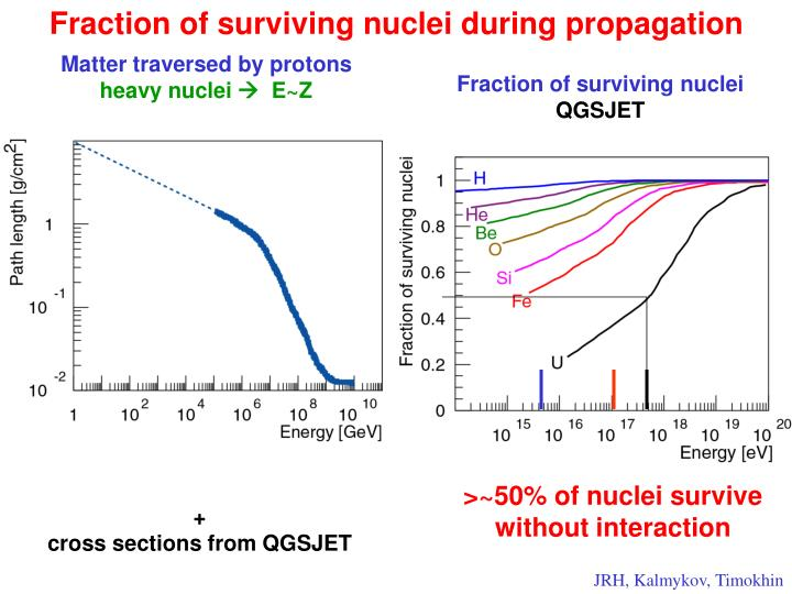 Fraction of surviving nuclei during propagation