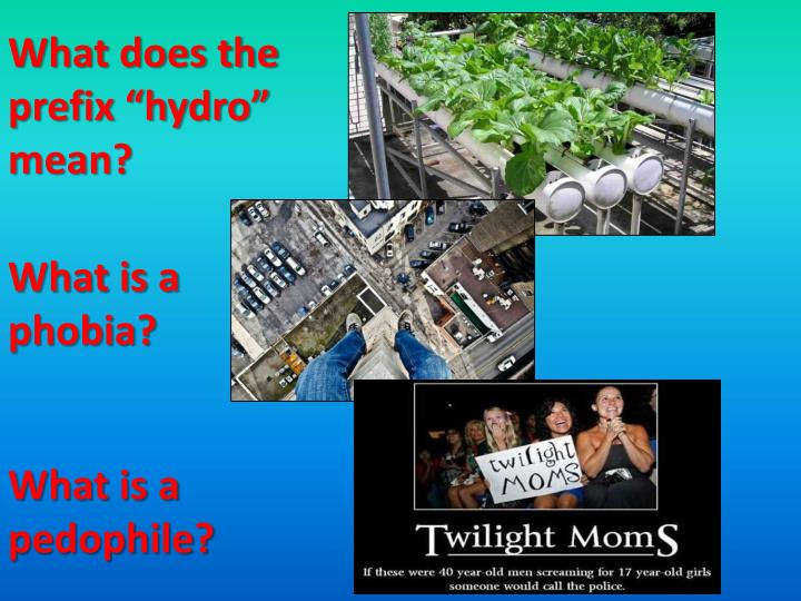 "What does the prefix ""hydro"" mean?"