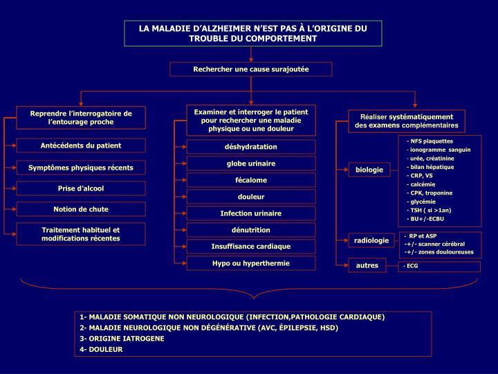 LA MALADIE D'ALZHEIMER N'EST PAS À L'ORIGINE DU TROUBLE DU COMPORTEMENT