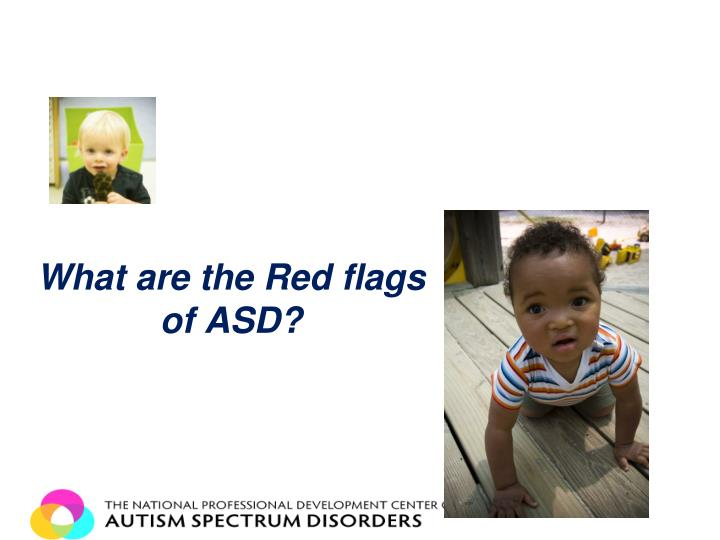 What are the Red flags of ASD?