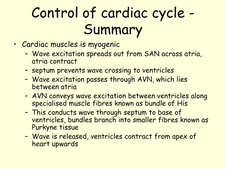 Control of cardiac cycle - Summary
