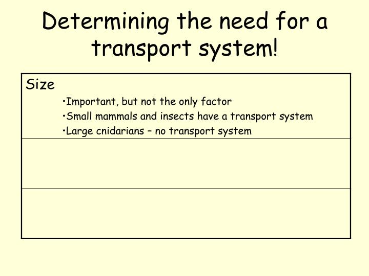 Determining the need for a transport system!