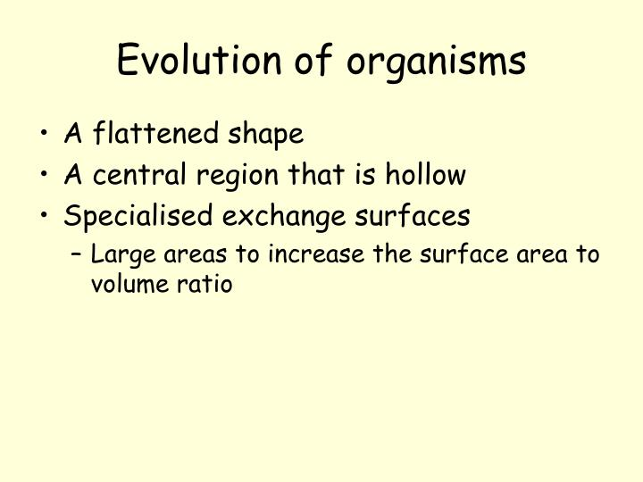 Evolution of organisms