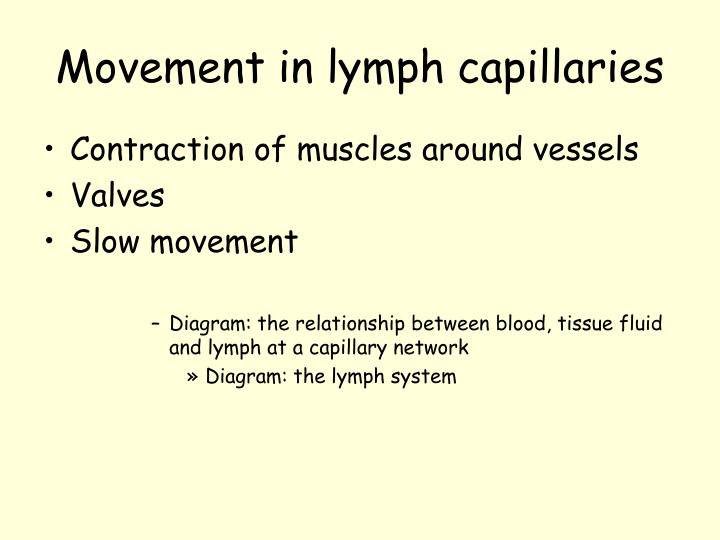 Movement in lymph capillaries