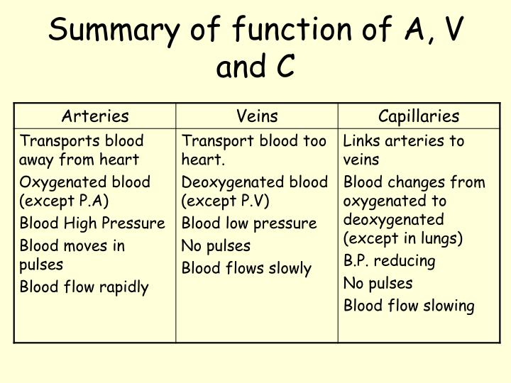 Summary of function of A, V and C