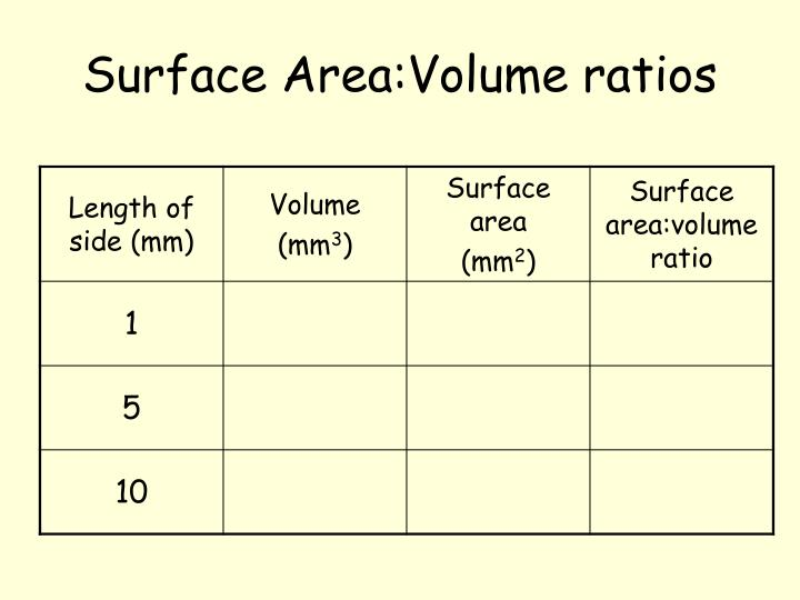 Surface Area:Volume ratios