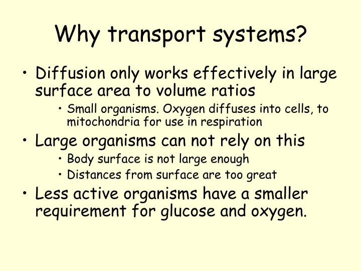 Why transport systems?