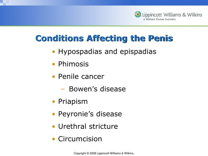 Conditions Affecting the Penis