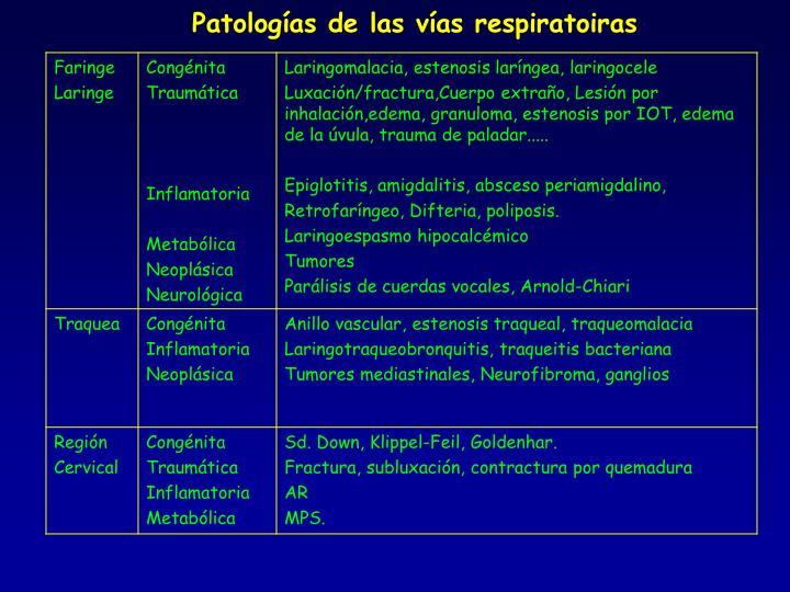 Patologías de las vías respiratoiras