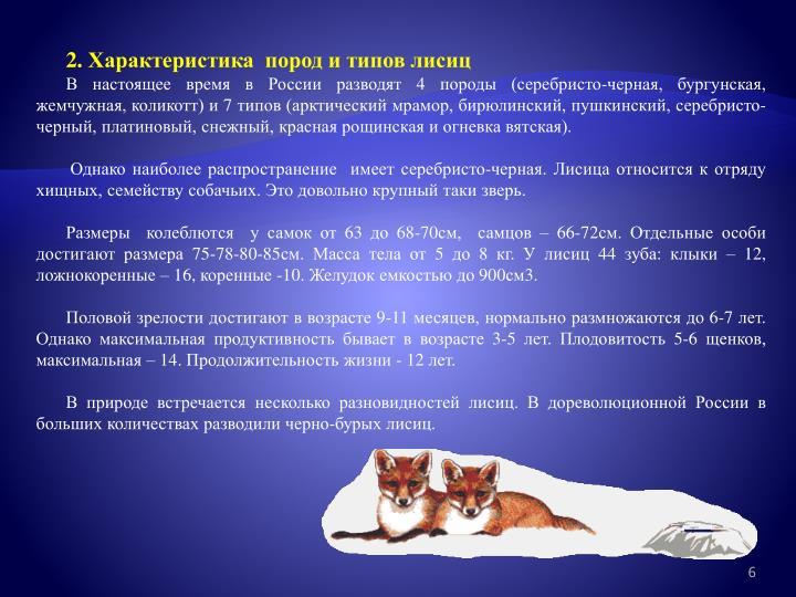 2. Характеристика  пород и типов лисиц