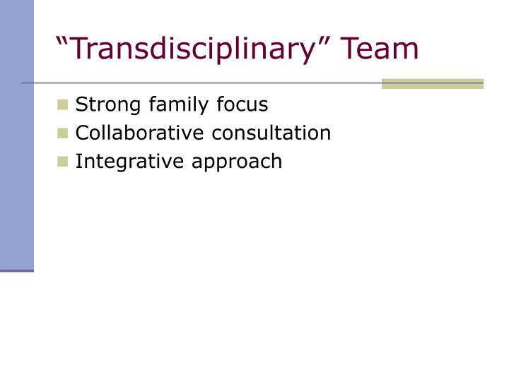 """Transdisciplinary"" Team"