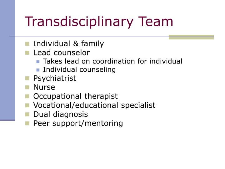 Transdisciplinary Team