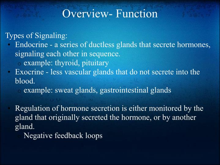 Overview- Function
