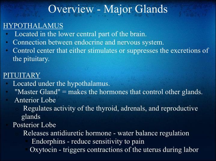 Overview - Major Glands