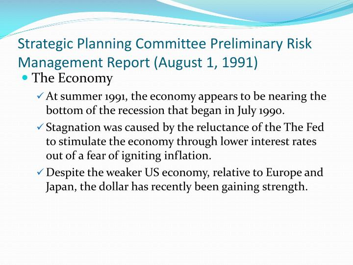 Strategic Planning Committee Preliminary Risk Management Report (August 1, 1991)