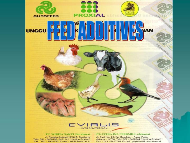 FEED ADDITIVES