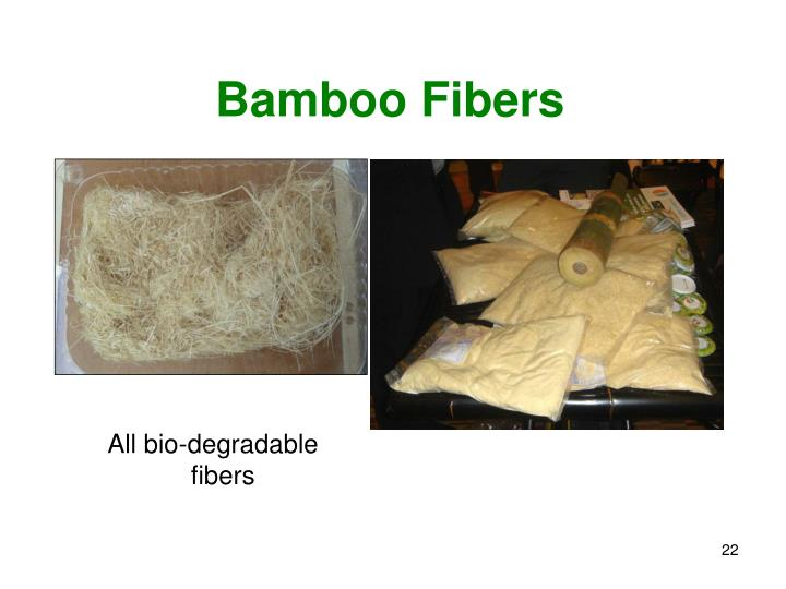 Bamboo Fibers