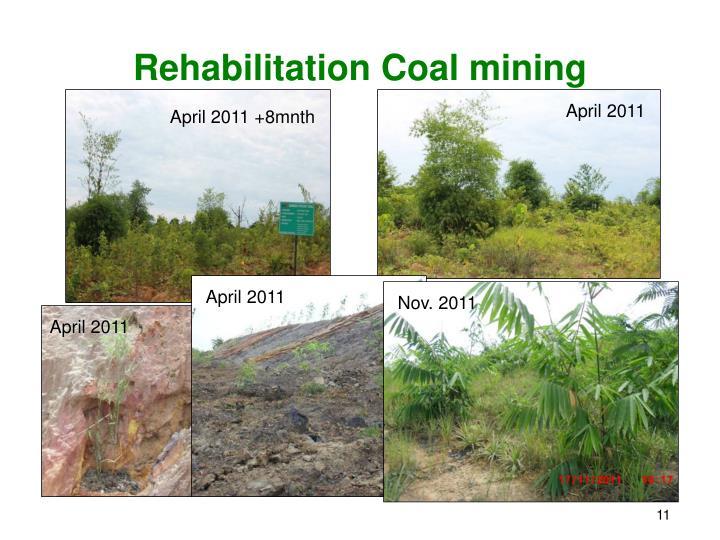 Rehabilitation Coal mining
