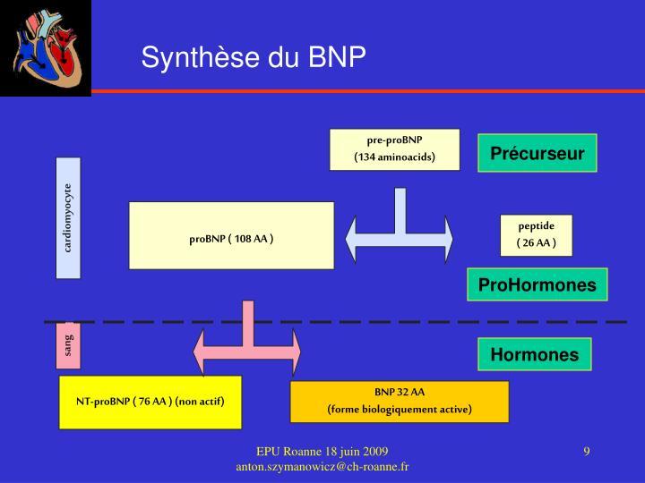 Synthèse du BNP