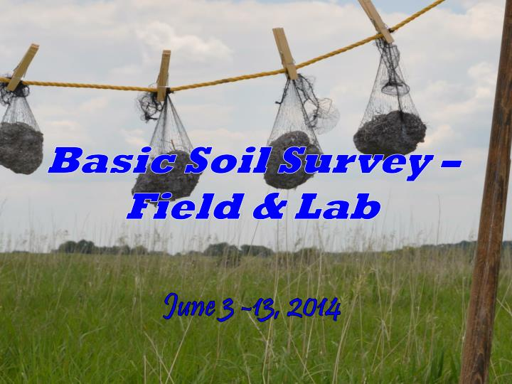 Basic Soil Survey – Field & Lab