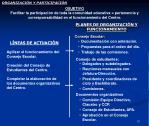 organizaci n y participaci n