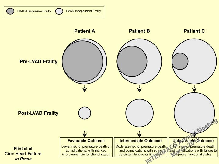 LVAD-Independent Frailty