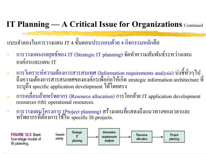 IT Planning  A Critical Issue for Organizations