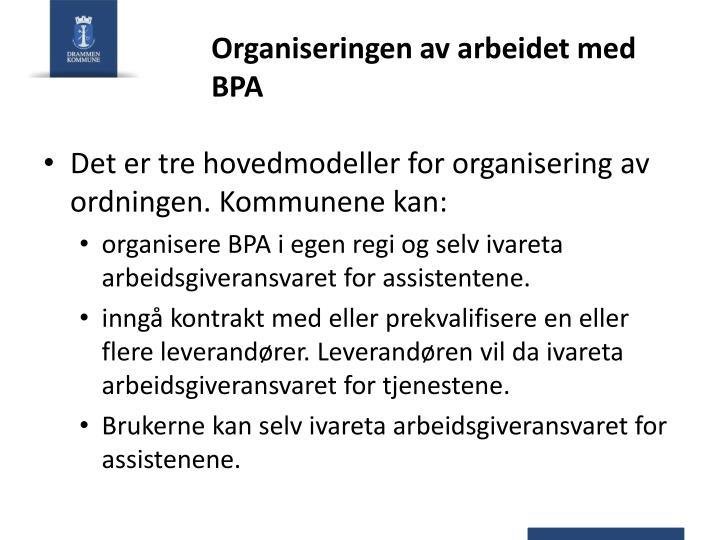 Organiseringen av arbeidet med BPA