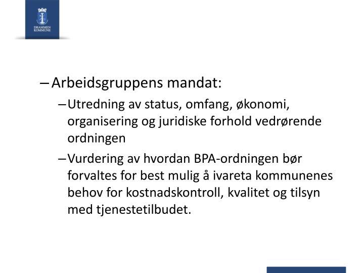Arbeidsgruppens mandat: