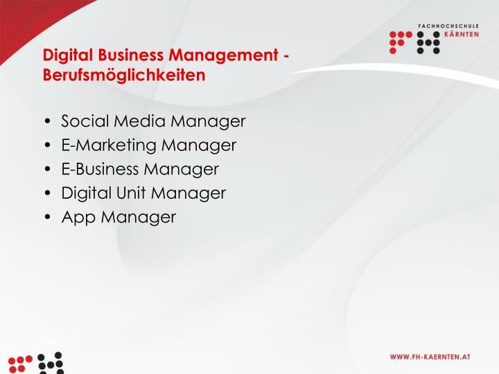 Digital Business Management - Berufsmöglichkeiten