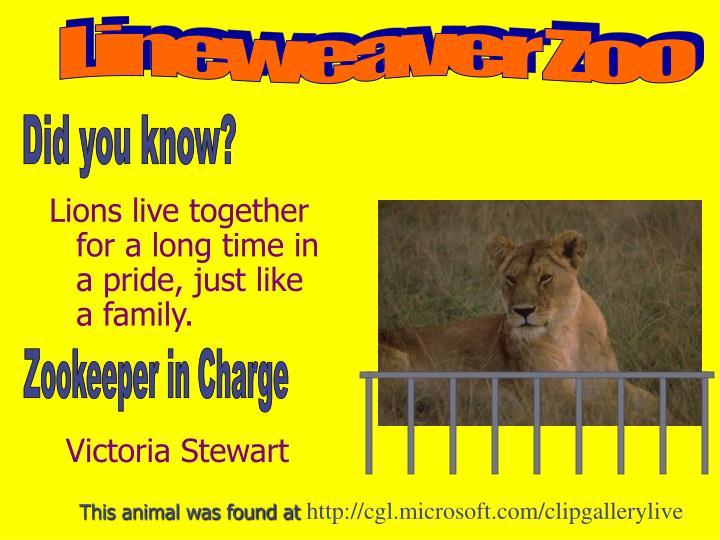 Lineweaver Zoo