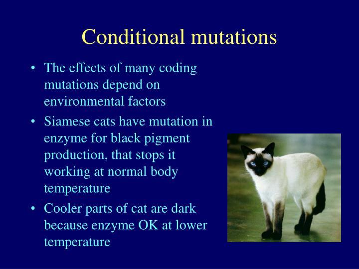 Conditional mutations