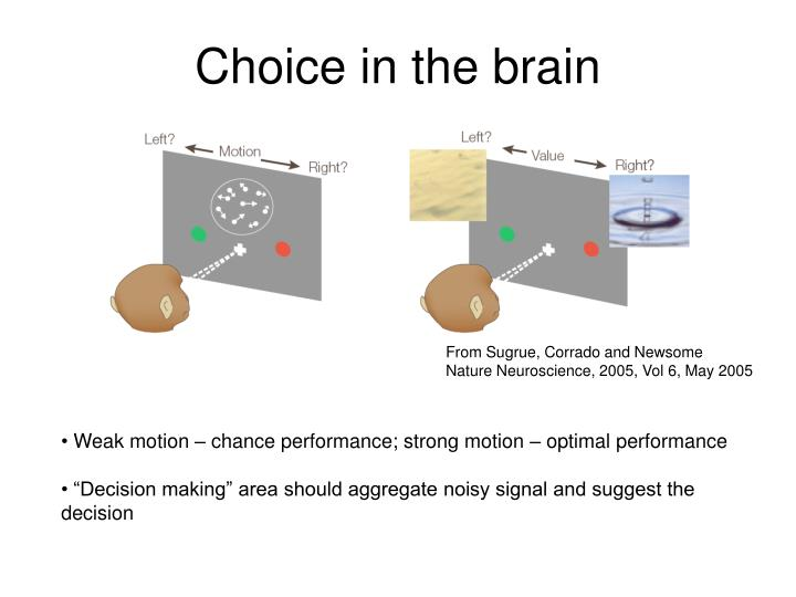 Choice in the brain