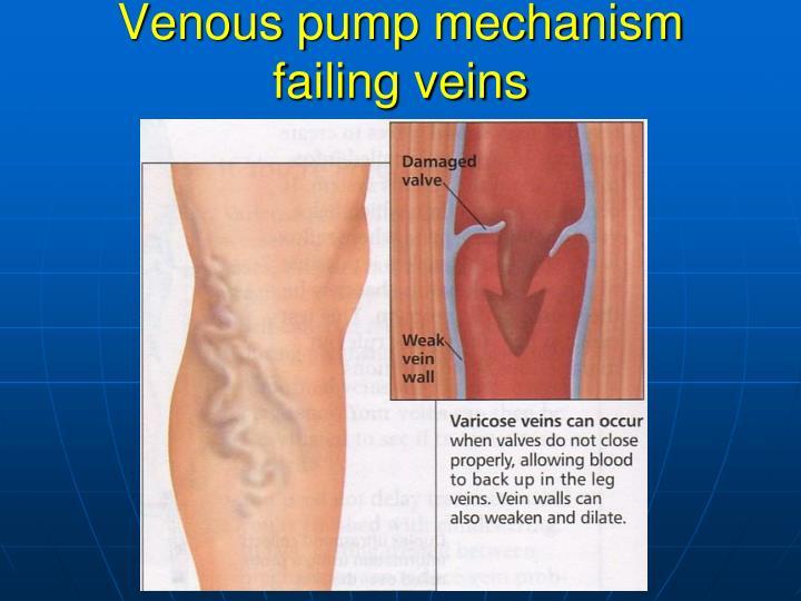 Venous pump mechanism