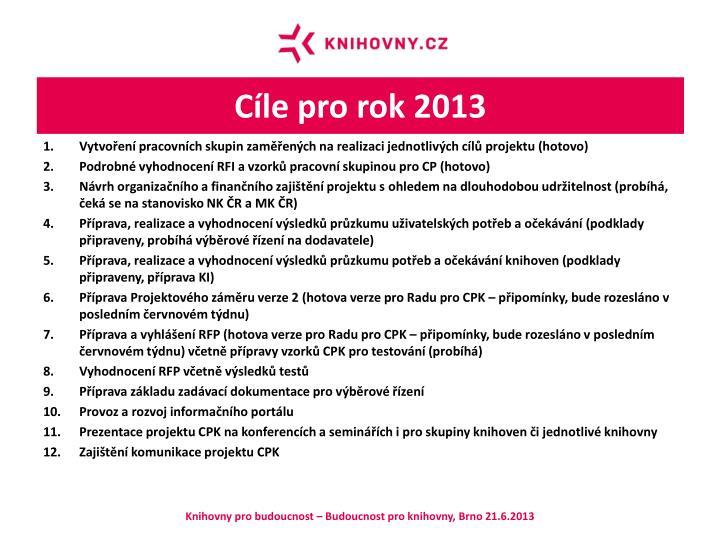 Cíle pro rok 2013