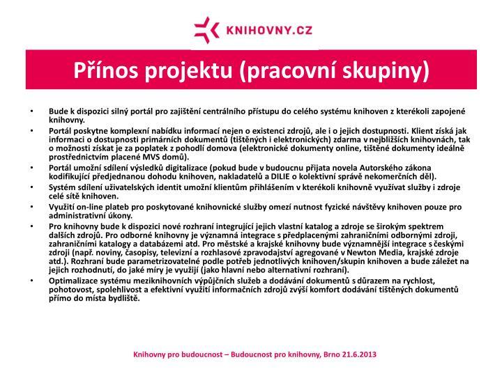 Přínos projektu (pracovní skupiny)